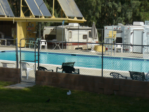 Victory Ranch Pool